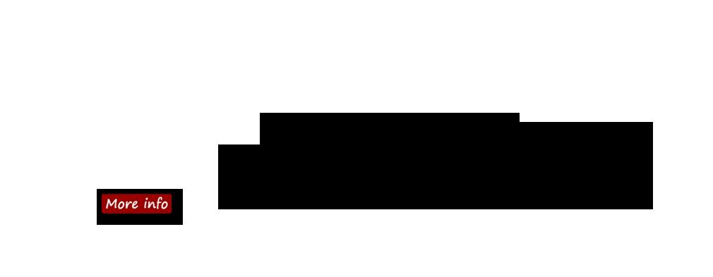 hm_slider_1010x393_silentauction2017_overlay